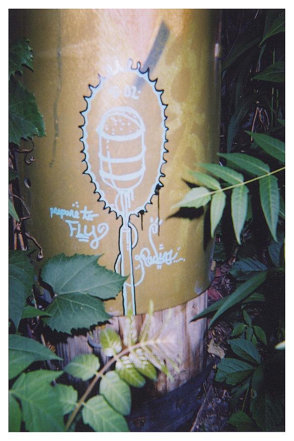 Graffiti Photograph - Fly by Richard N Watkins