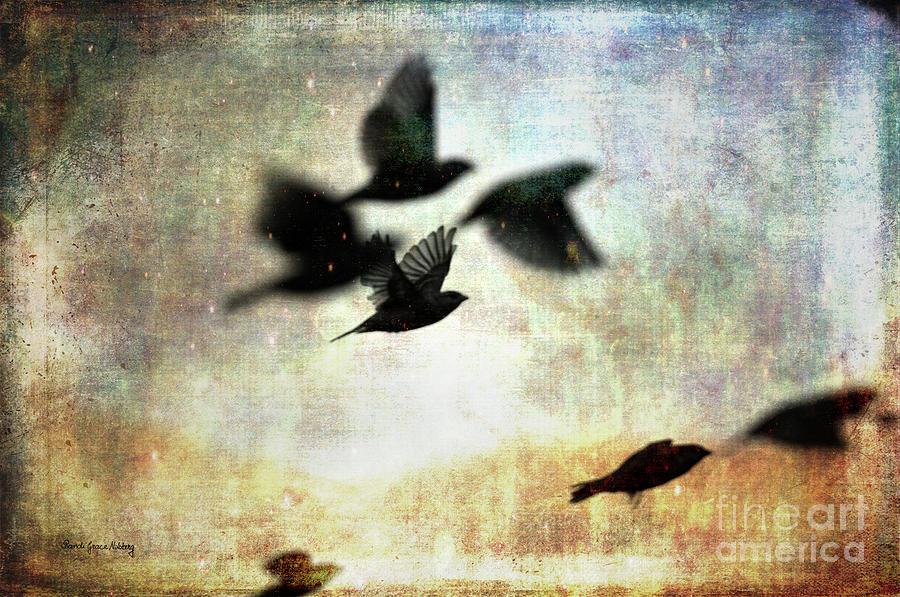 Birds Photograph - Fly With The Mood by Randi Grace Nilsberg
