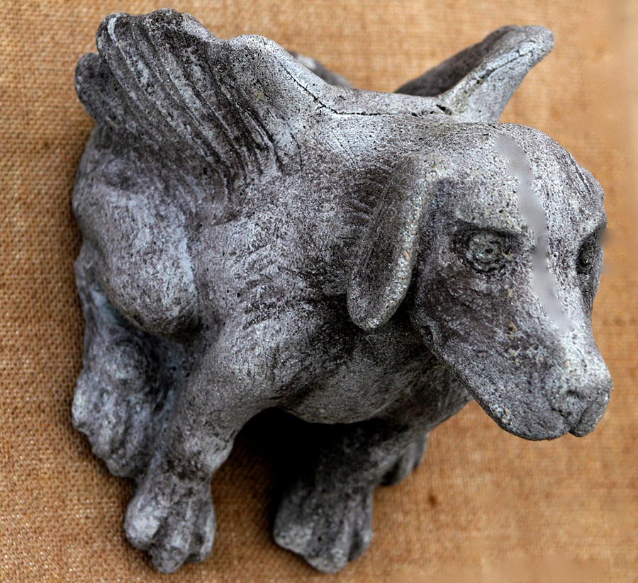 Dog Sculpture - Flying Dog Gargoyle by Katia Weyher