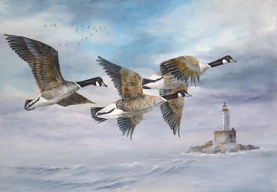 Aleutian Geese Painting - Flying Home by Lynne Parker