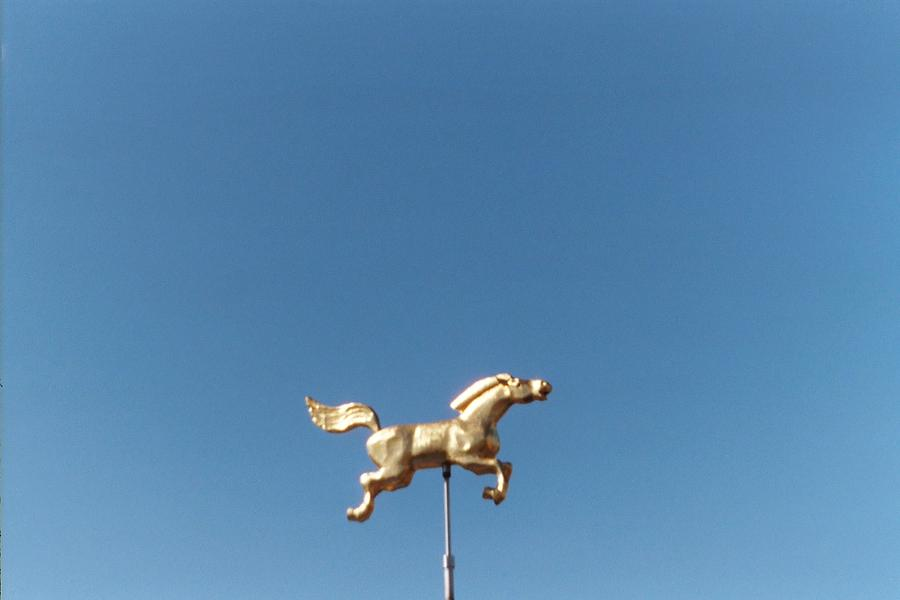 Chattanooga Photograph - Flying Horse Chattanooga by Jake Hartz