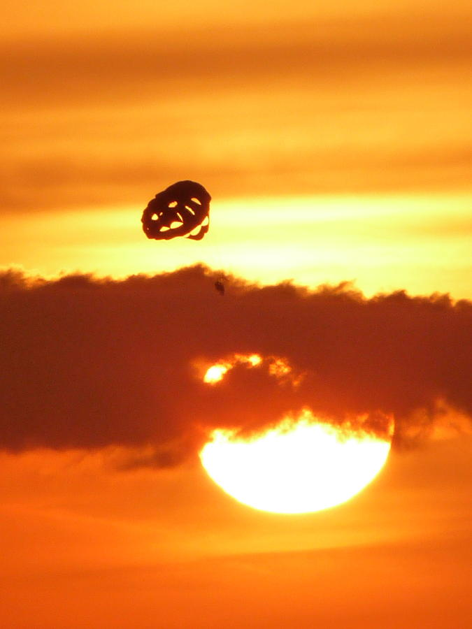Flying Into The Sunset Photograph