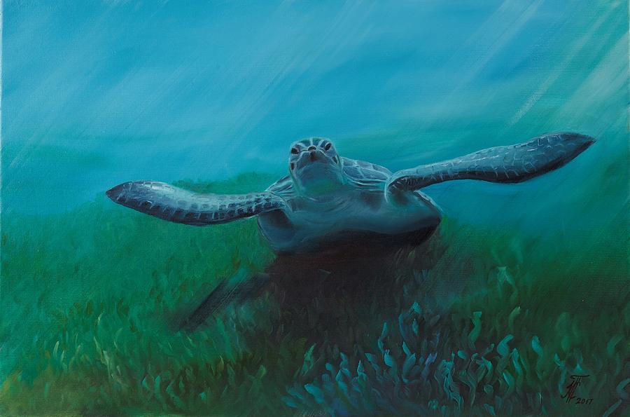 Turtle Painting - Flying Turtle by Ksenia Sergeeva