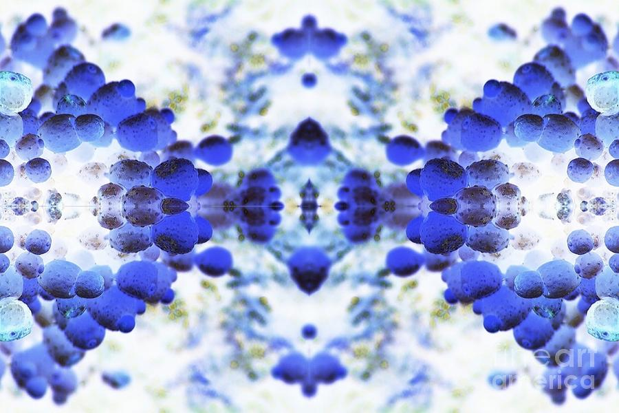 Abstract Digital Art - Focus by Lorles Lifestyles