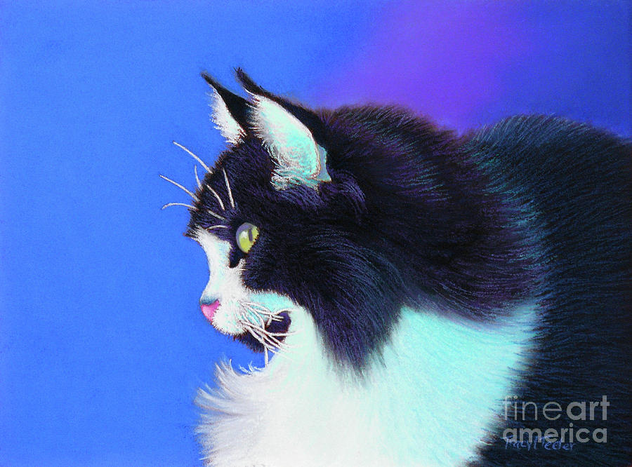 Cat Pastel - Focus by Tracy L Teeter