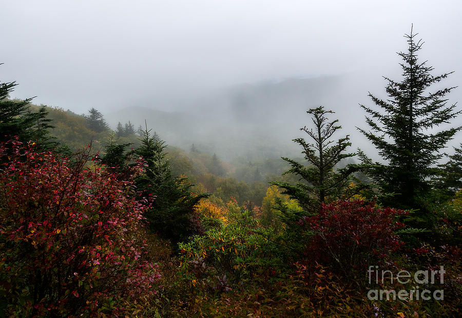 Blue Ridge Parkway Photograph - Fog And Drizzle. by Itai Minovitz