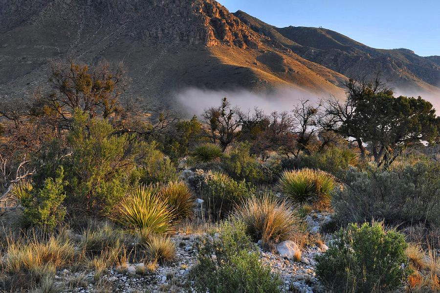 Sunrise Photograph - Fog At Sunrise - Guadalupe Mountains by Stephen  Vecchiotti