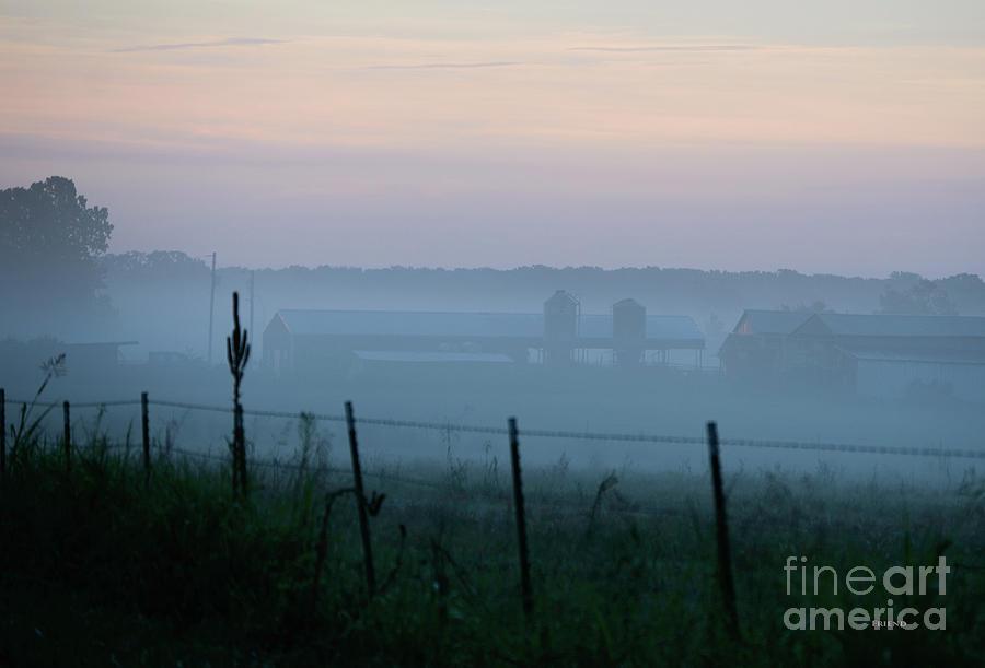 Fog At The Farm Photograph