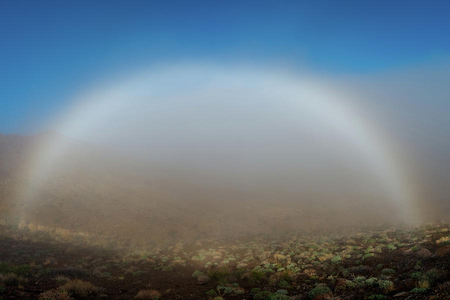 Color Photograph - Fog Bow by TM Schultze