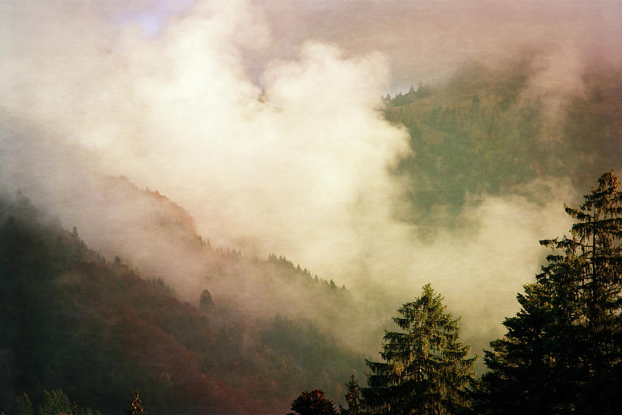 Autmn Photograph - Fog Competes With Sun by AugenWerk Susann Serfezi