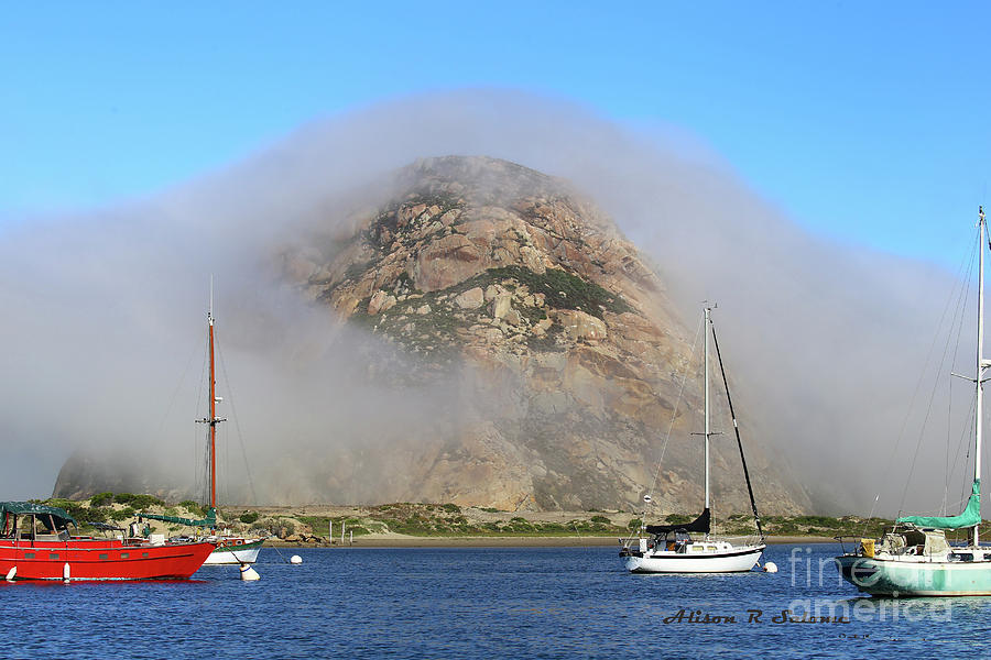Fog Hugging Rock by Alison Salome