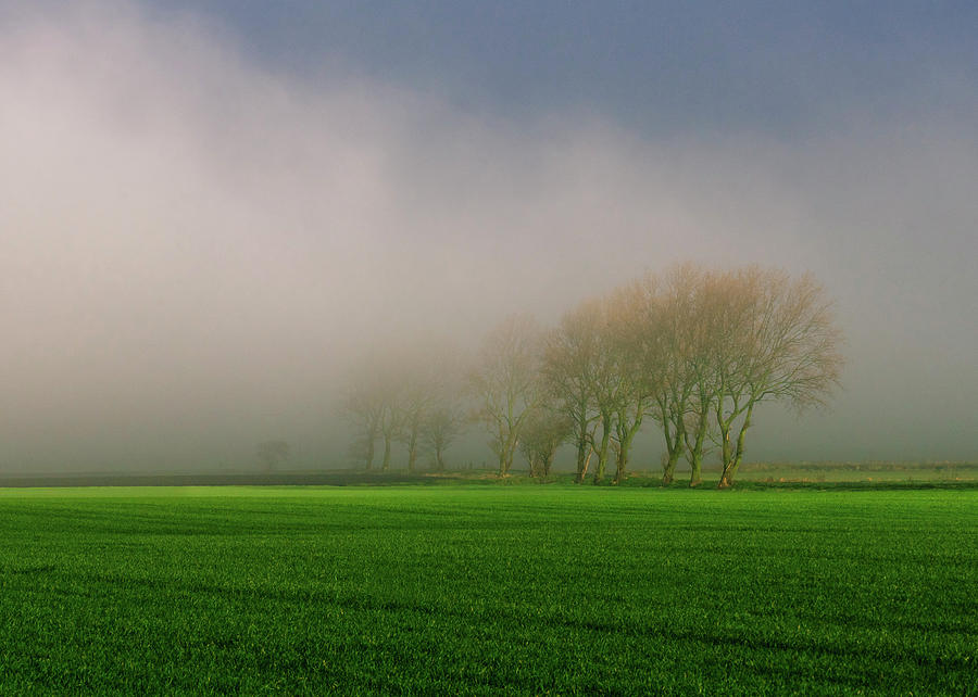 Fog Photograph - Fog Meet Sun by Phillips and Phillips