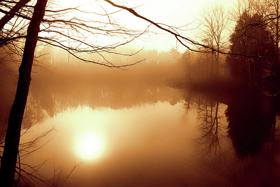 Photo Photograph - Fog On Shelly Lake - 2 by Alan Hausenflock