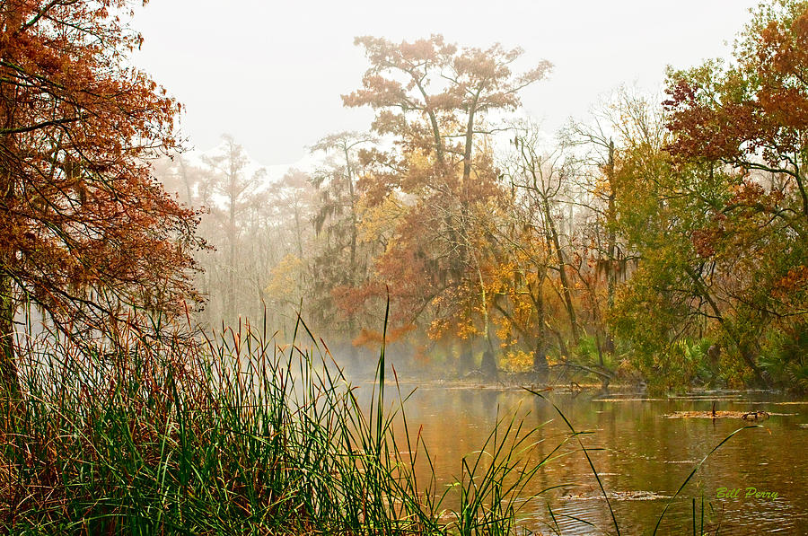Landscape Photograph - Fog On The Bayou by Bill Perry