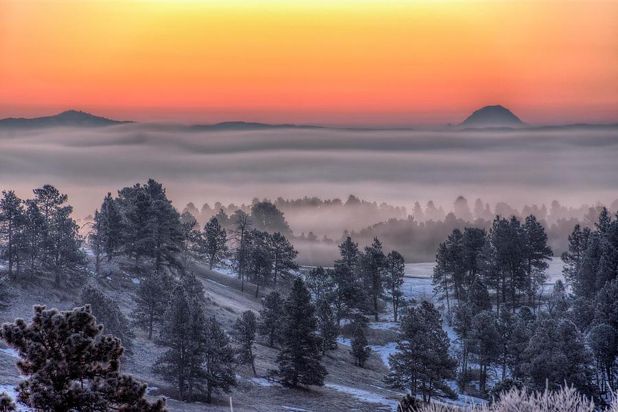 Foggy Dawn by Fiskr Larsen