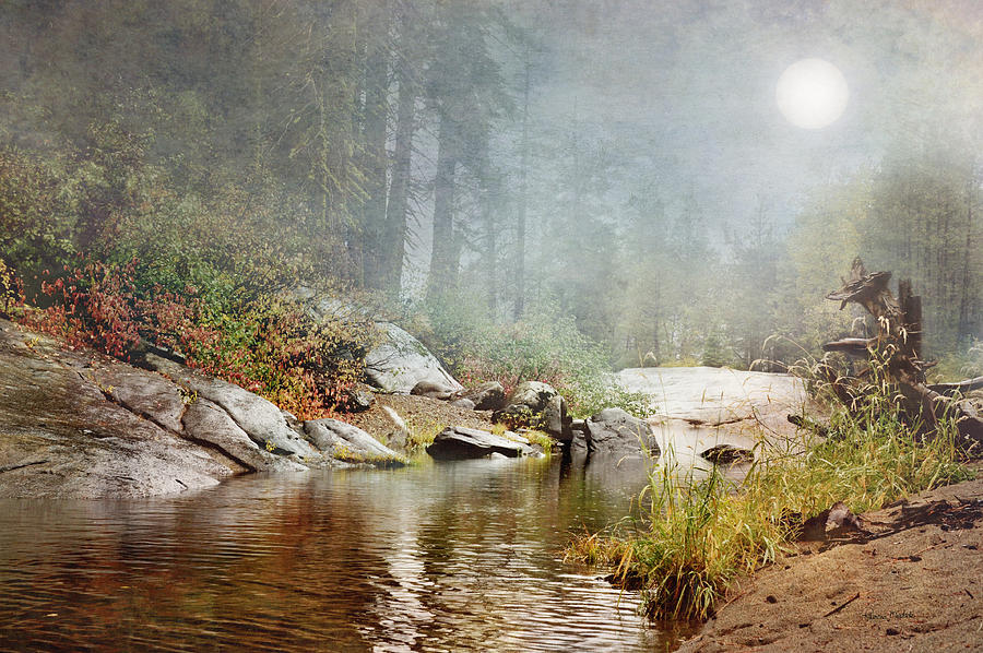 Landscape Digital Art - Foggy Fishin Hole by Ramona Murdock