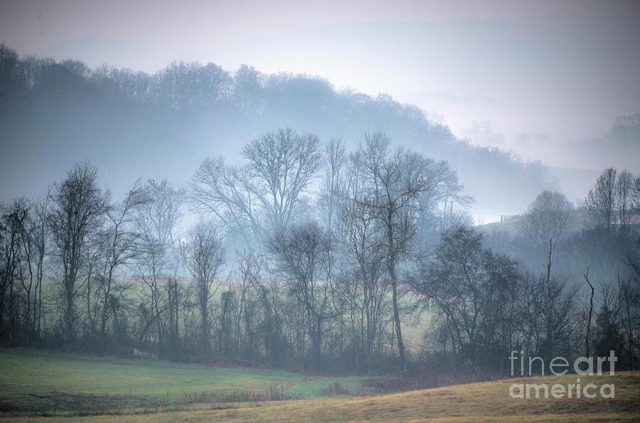Foggy Hills by Wanda Krack