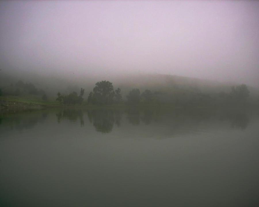 Fog Photograph - Foggy Lake Shore by Ralph Steinhauer