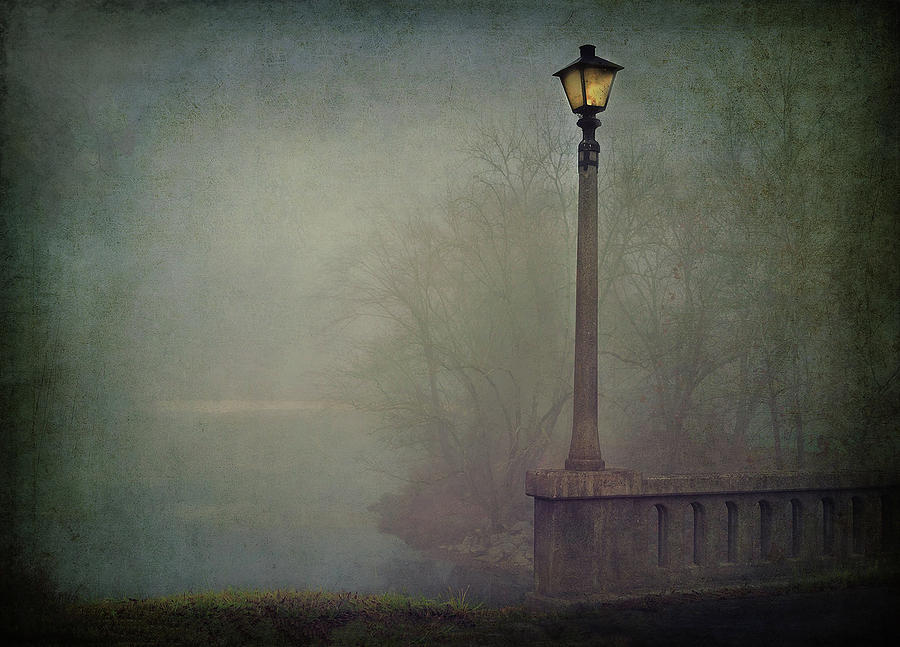 Fog Photograph - Foggy Lampost by William Schmid