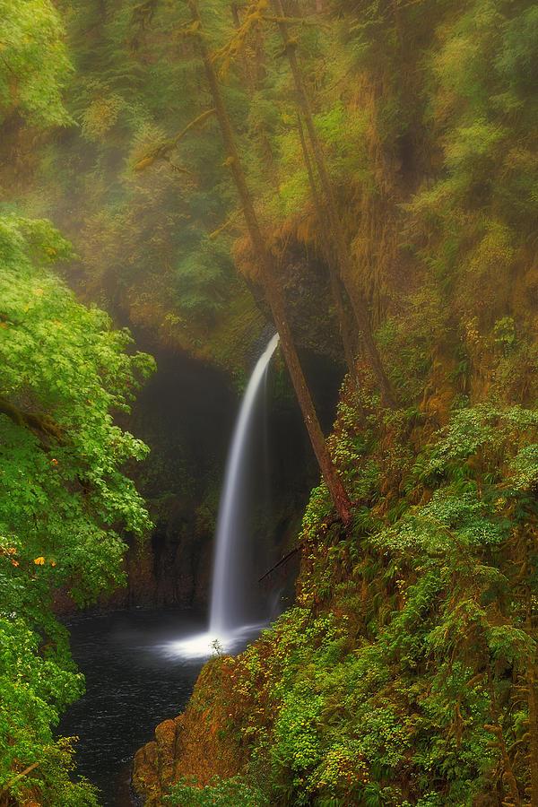 Metlako Falls Photograph - Foggy Metlako Falls by David Gn