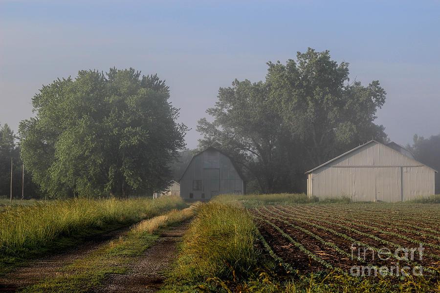 Fog Photograph - Foggy Mist Lane by Doug Daniels