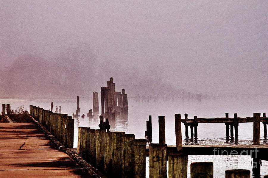 Clay Photograph - Foggy Morn by Clayton Bruster