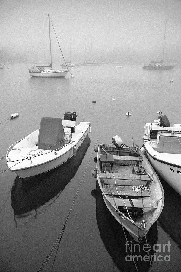 Black And White Photograph - Foggy Morning In Cape Cod Black And White by Matt Suess