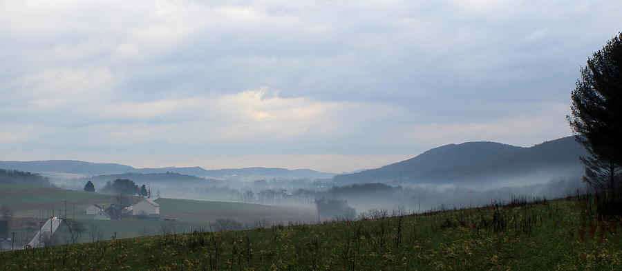Fog Photograph - Foggy Morning In The Valley by Liz Allyn