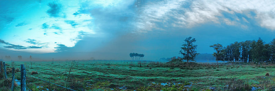 Pasture Photograph - Foggy Morning Pasture by Roberto Aloi