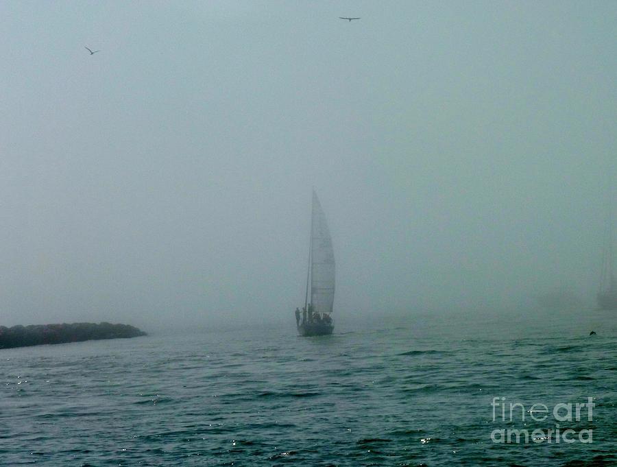 Foggy Sailboat And Osprey Photograph