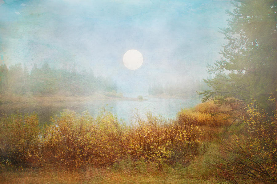 Landscape Digital Art - Foggy Sunrise  by Ramona Murdock