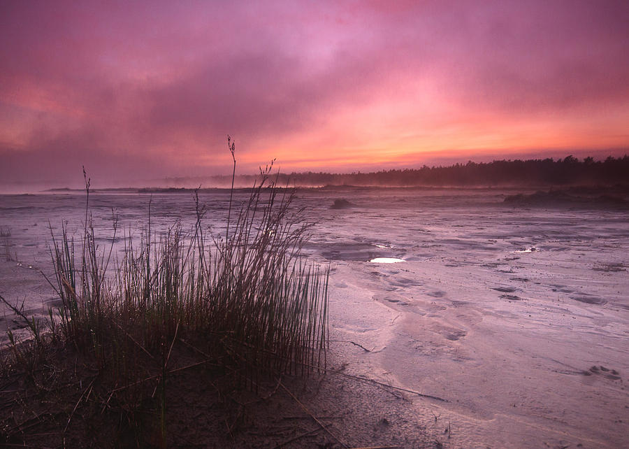 Landscape Photograph - Foggy Sunset At Singing Sands by Cale Best