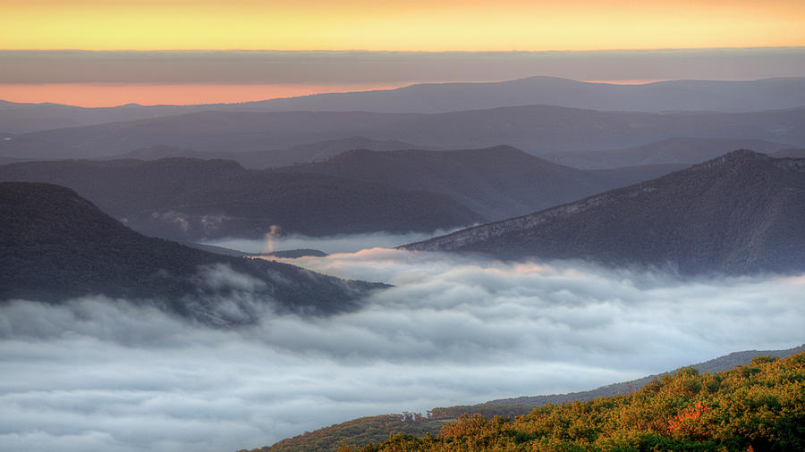 Foggy Valley Morning by Michael Donahue