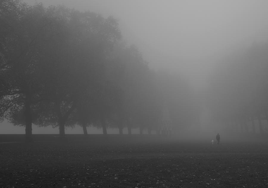 Foggy Westminster Photograph