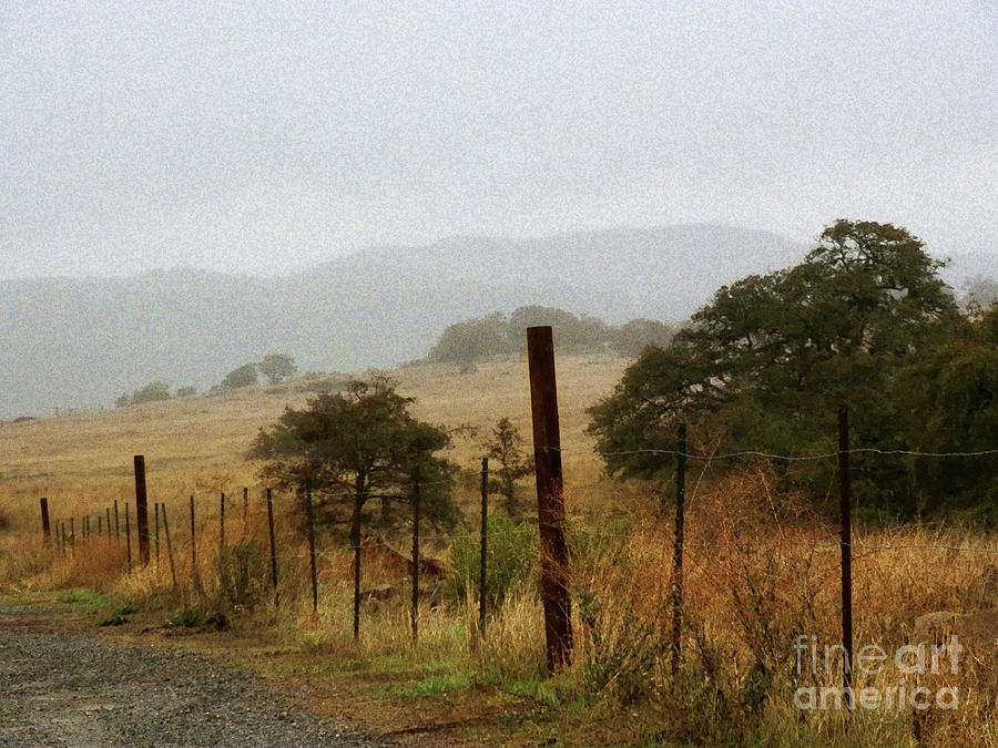 Foggy Photograph - Foggy Wet Morning by Robert Ball