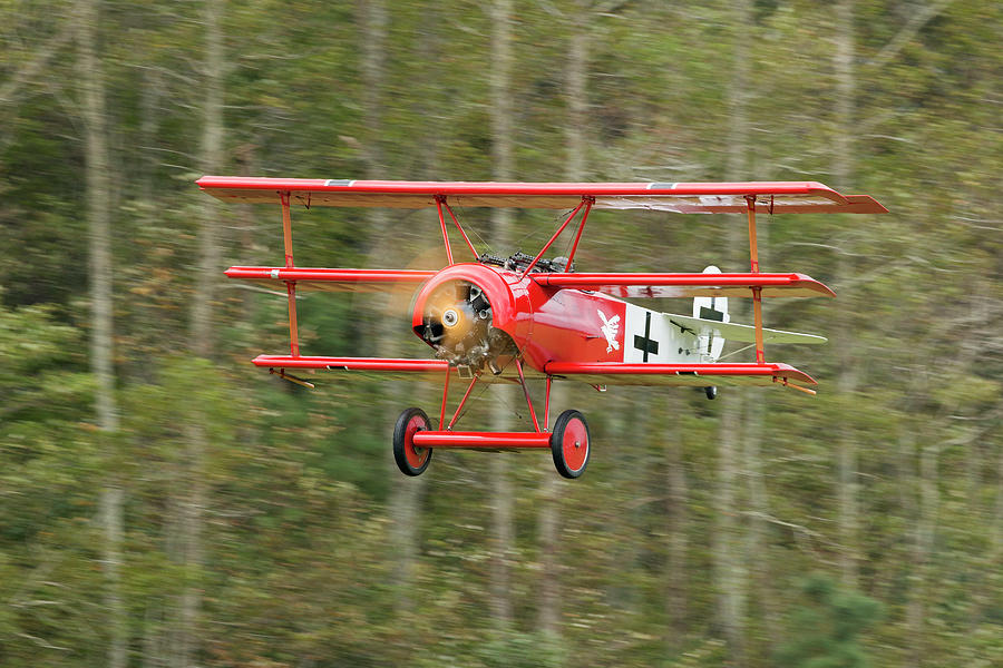 Action Photograph - Fokker DR.I Flyby by Liza Eckardt