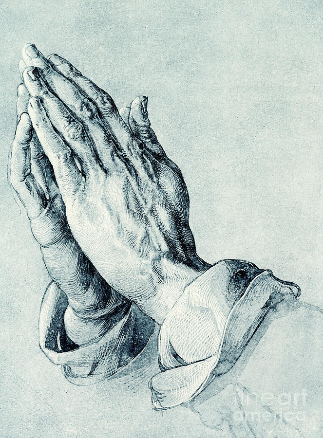 Folded Hands Of An Apostle Drawing By Albrecht Durer