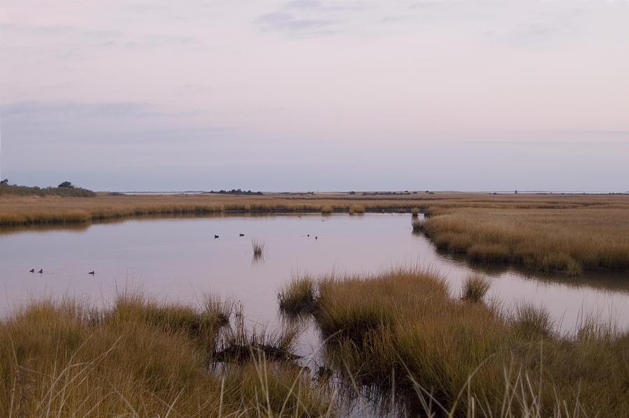 Nantucket Photograph - Folgers Marsh Nantucket by Henry Krauzyk
