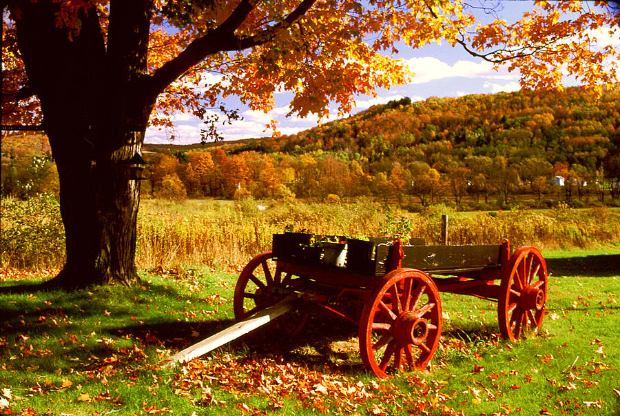 Autumn Photograph - Foliage and Old Wagon by Roger Soule