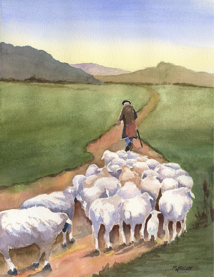 Sheep Painting - Follow Me by Marsha Elliott