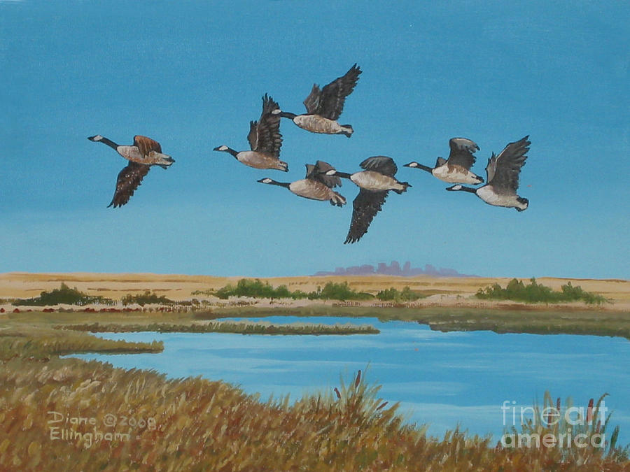 Canada Geese Painting - Follow The Leader by Diane Ellingham