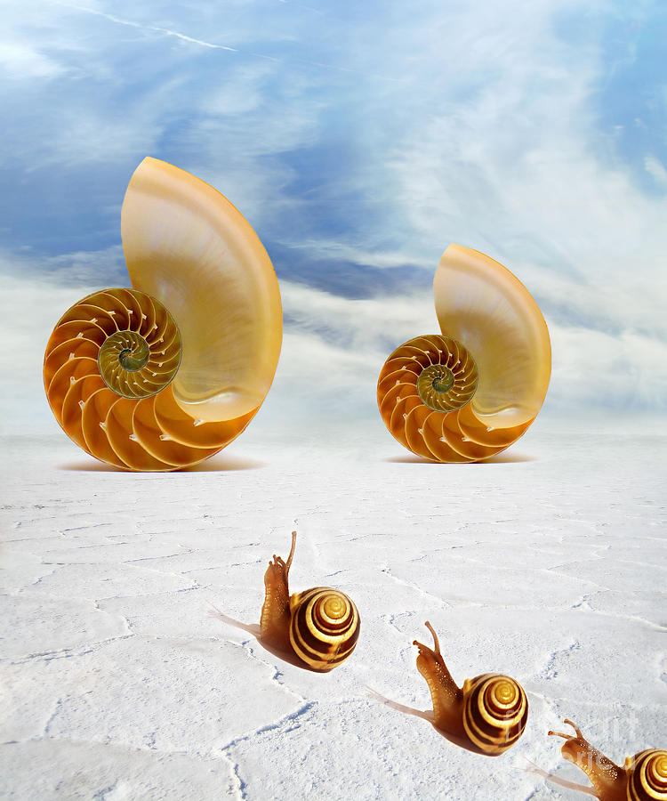 Conceptual Digital Art - Follow Your Dreams by Jacky Gerritsen