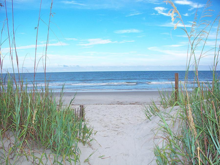 Folly Beach II Photograph by Melanie Snipes
