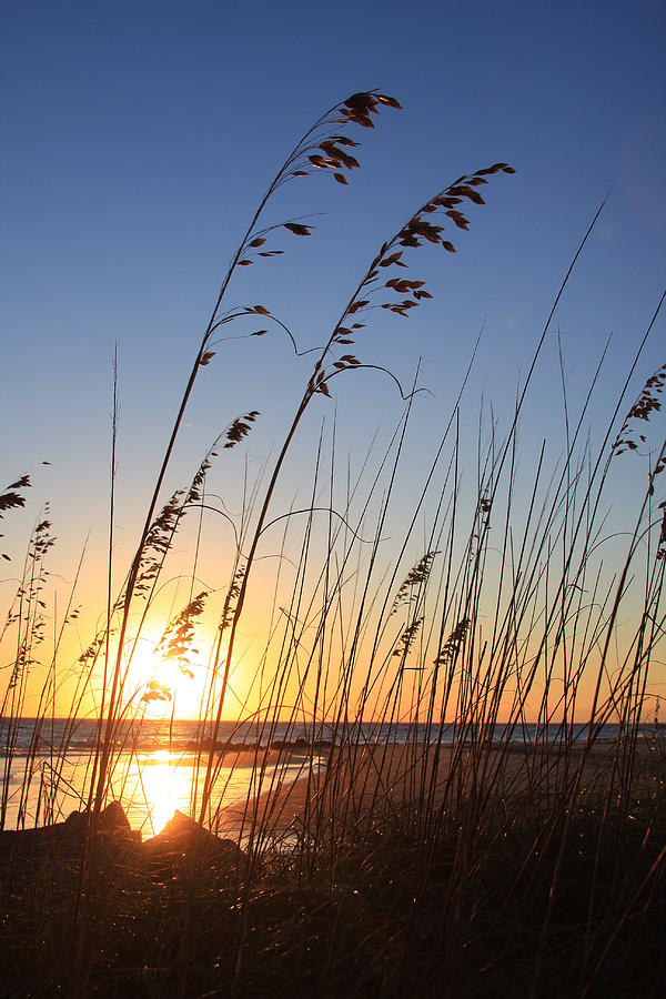 Folly Beach Sunrise Sc Photograph