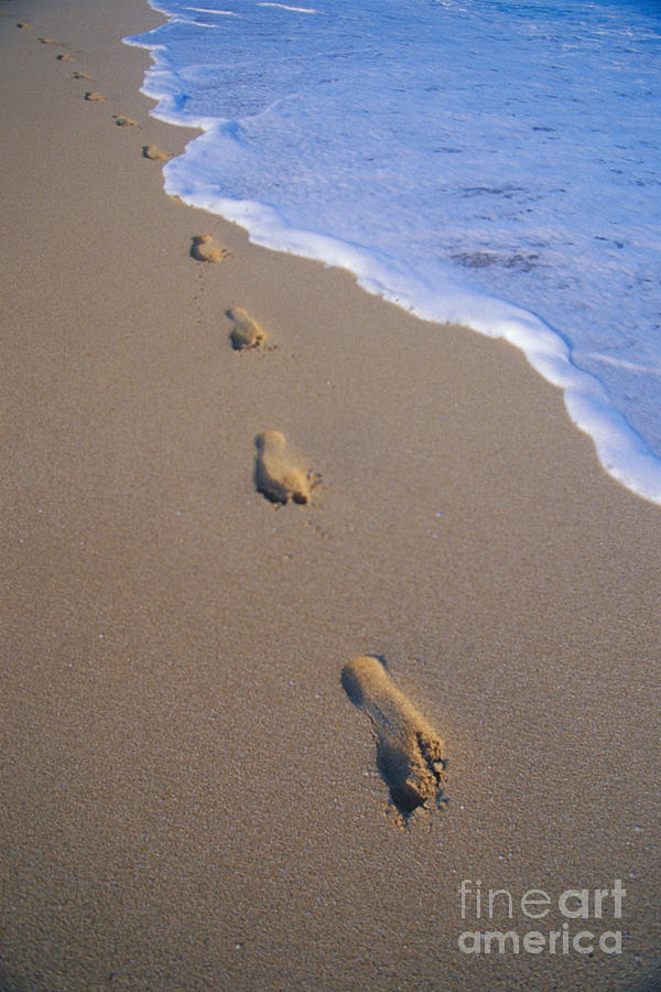 Afternoon Photograph - Footprints by Don King - Printscapes