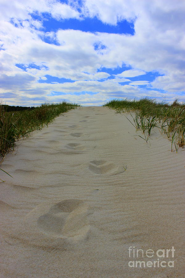 Footprints Photograph by Hanni Stoklosa