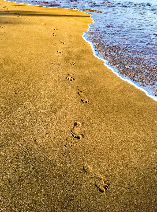 Footprints in the Sand by Bob Mintie