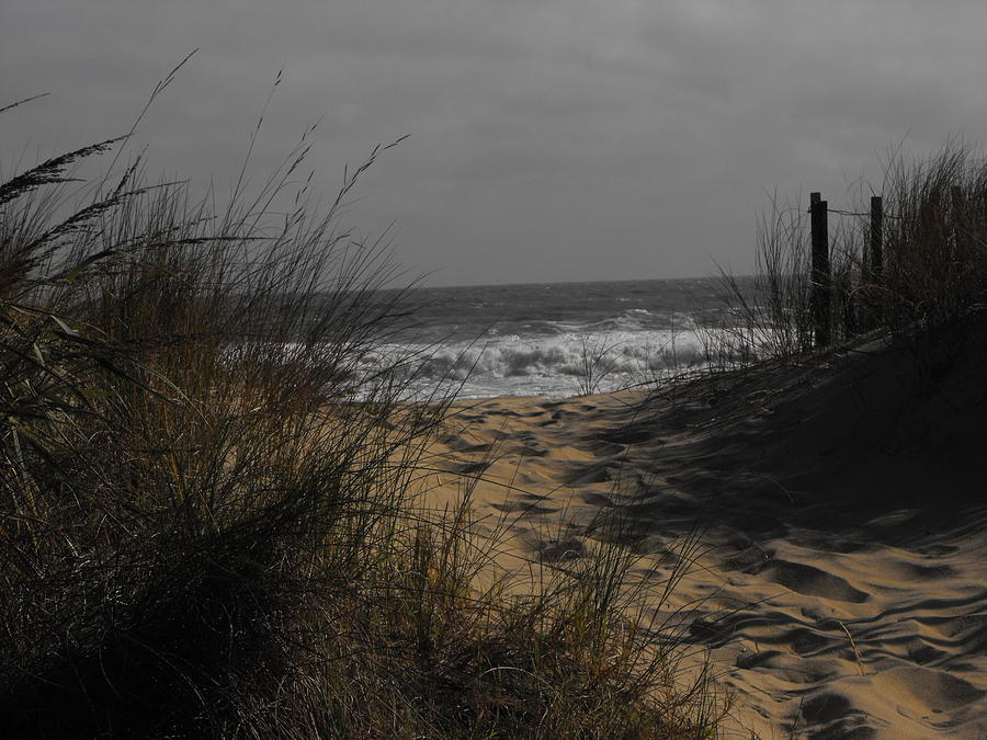 Sandbridge Photograph - Footprints In Winter Sand by Kathryn Blackman