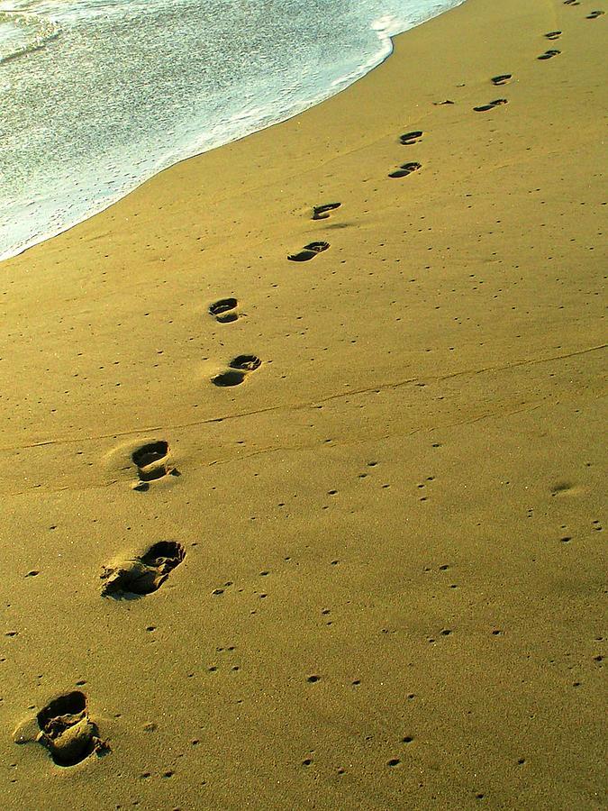 Footprints Photograph - Footprints by Jimmy Poor