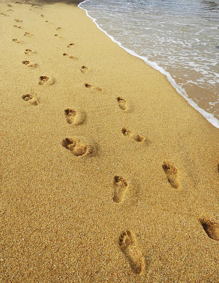 Kết quả hình ảnh cho leave footprints